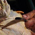 Ощипывание курицы дома