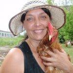 Курица Тетра с хозяйкой