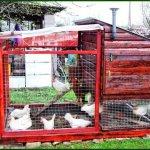 Яркий домик для кур