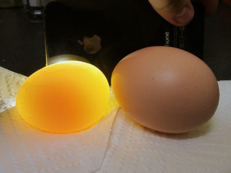 Сравнение яиц со скорлупой и без