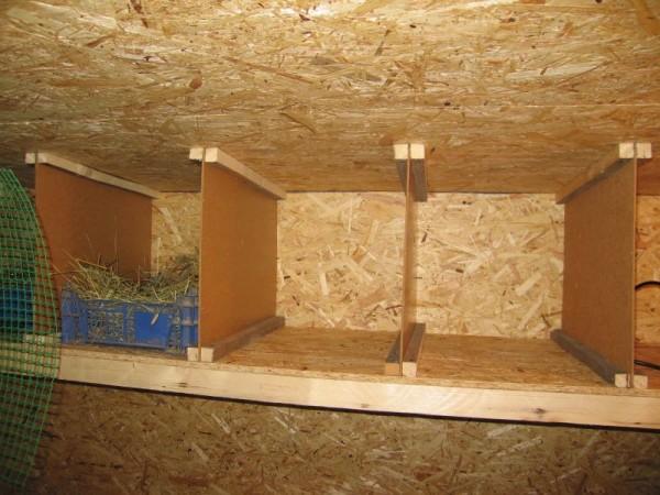 Гнезда в самодельном курятнике