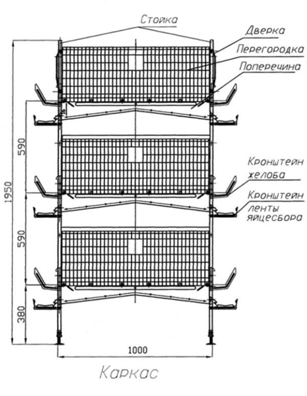 Схема клетки для несушек