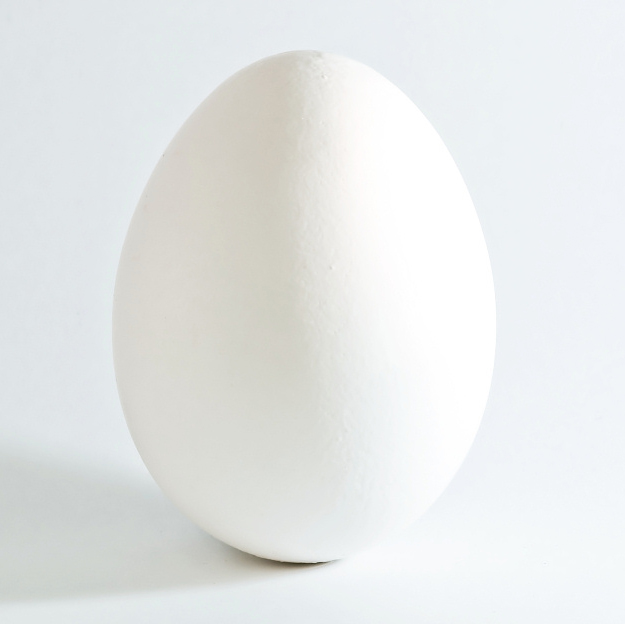 Белое куриное яйцо