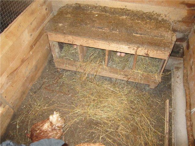 Гнездо в форме закрытого домика
