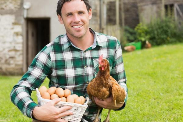 Фермер с курицей и лукошком яиц в руках