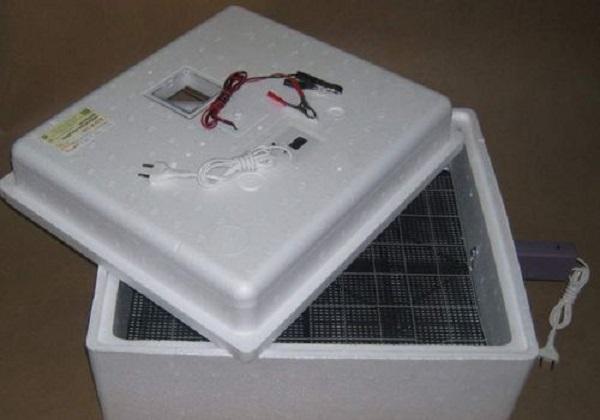 Внешний вид инкубатора