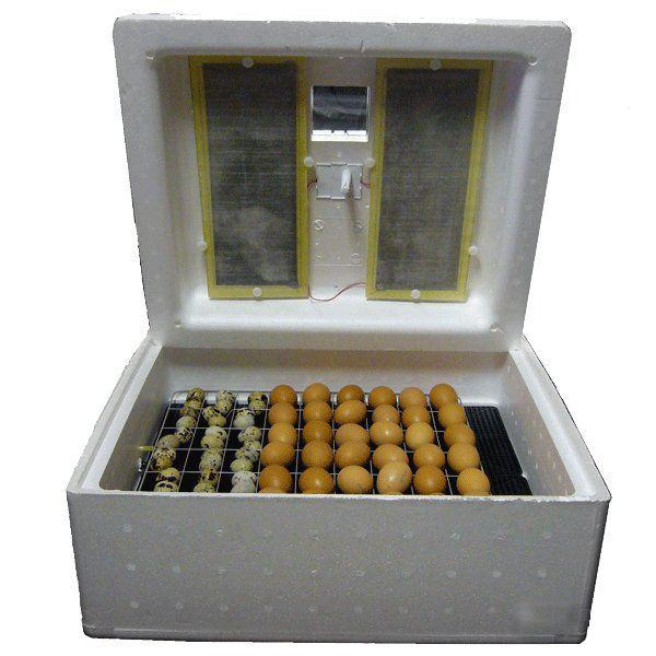 Инкубатор Несушка с яйцами