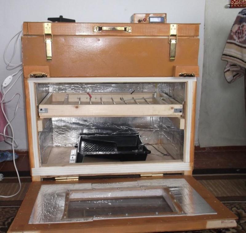 Оригинальный инкубатор из чемодана