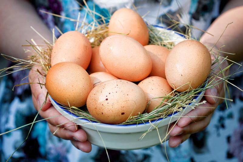 Тарелка с яйцами в руках