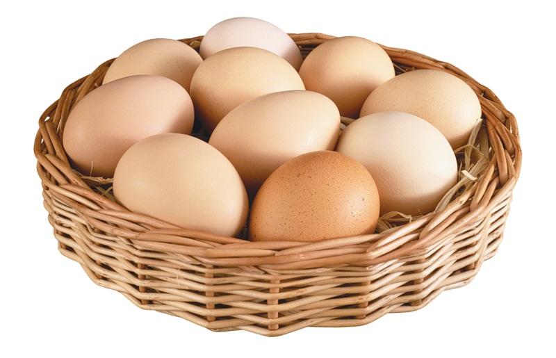 Чистые яйца для инкубации в лукошке