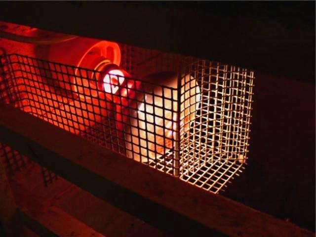 Инфракрасная лампа в клетке
