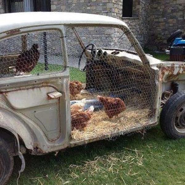 Оригинальный домик для куриц из старой машины