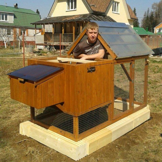 Процесс постройки курятника