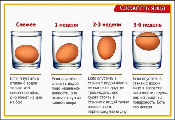 Определение свежести куриного продукта