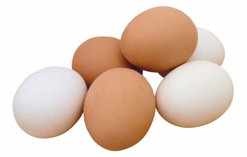 Яйца несушек